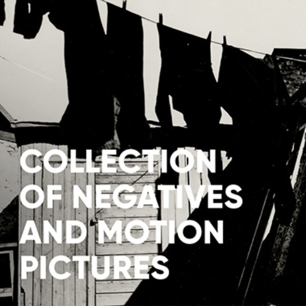 Collection of negatives and motion pictures
